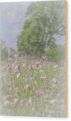 Wildflower Impressionism Wood Print by Elaine Teague