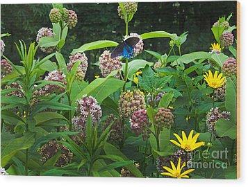 Wildflower Meadow Wood Print by Kenneth Murray