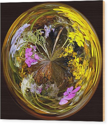Wood Print featuring the photograph Wildflower Paperweight by Gary Holmes
