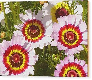 Wildflowerd Wide 1 Wood Print by Amy Vangsgard