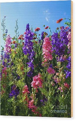 Wildflowers #14 Wood Print by Robert ONeil