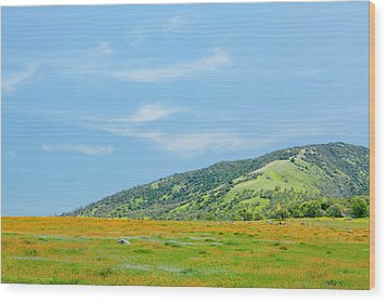 Afternoon Delight - Wildflowers And Cirrus Clouds - Spring In Central California Wood Print