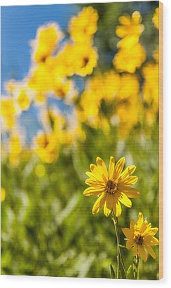 Wildflowers Standing Out Abstract Wood Print by Chad Dutson