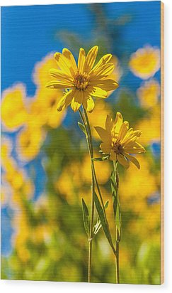 Wildflowers Standing Out Wood Print by Chad Dutson