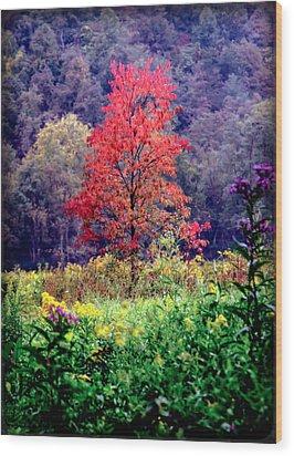 Wildwood Flowers Wood Print by Karen Wiles