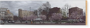 Wilkes-barre In Bloom Wood Print by Christina Verdgeline