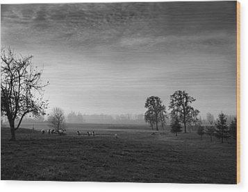 Willamette Valley Evening Wood Print