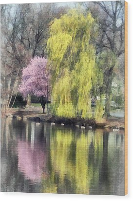 Willow And Cherry By Lake Wood Print by Susan Savad