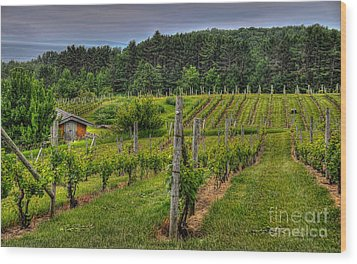 Willows Winery Wood Print by Trey Foerster
