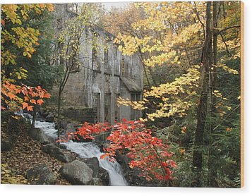 Willsons Ruins In Gatineau Park In Quebec Wood Print by Rob Huntley
