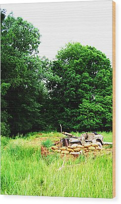 Willy's Outpost Wood Print by Jame Hayes