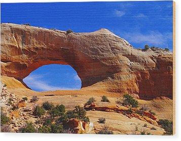 Wilsons Arch Wood Print by Jeff Swan