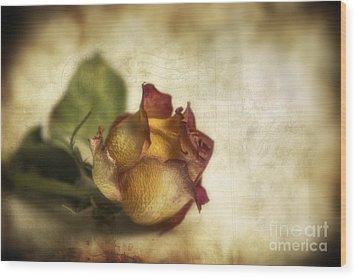 Wilted Rose Wood Print by Veikko Suikkanen
