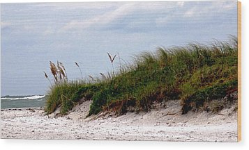 Wind In The Seagrass Wood Print by Ian  MacDonald