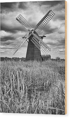 Wind Pump At Herringfleet Wood Print