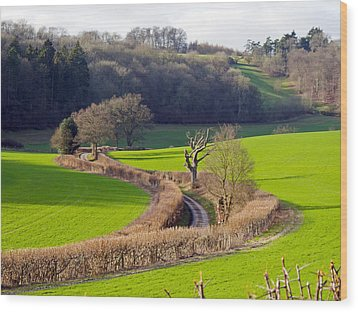 Winding Country Lane Wood Print