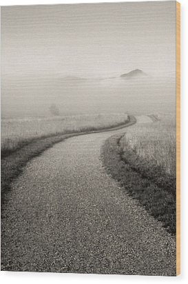 Winding Path And Mist Wood Print by Marilyn Hunt
