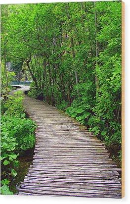 Winding Path Wood Print by Ramona Johnston
