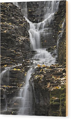 Wood Print featuring the photograph Winding Waterfall by Christina Rollo