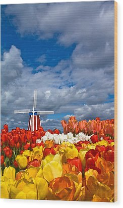 Windmill And Tulips Wood Print by Patricia Davidson