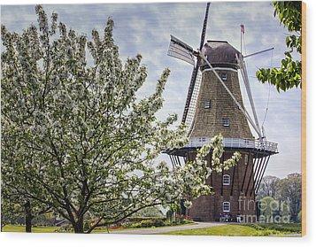 Windmill At Windmill Gardens Holland Wood Print