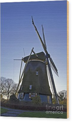 Windmills Of Holland Wood Print by Pravine Chester