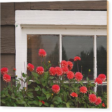 Wood Print featuring the photograph Window Box Delight by Jordan Blackstone