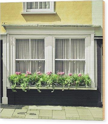 Window Garden Wood Print by Tom Gowanlock