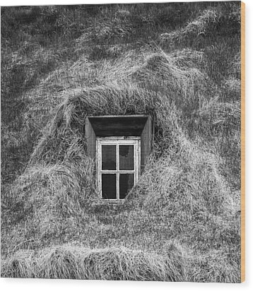Window In Nature Wood Print