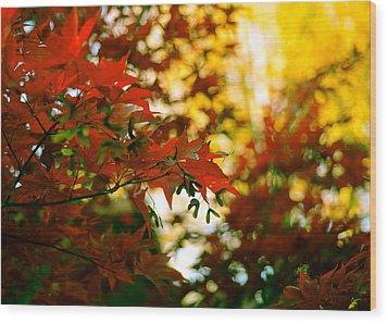 Window Into Fall Wood Print by Ronda Broatch