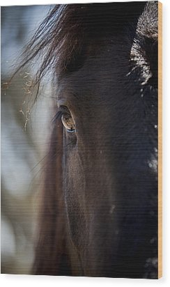 Window Into The Gentle Giant's Soul Wood Print by Amber Kresge