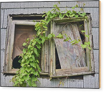Window Shade 2 Wood Print by Jeffrey Platt