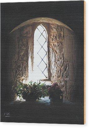 Window Solitude Wood Print by Darren Baker