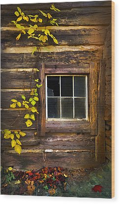Window To The Soul Wood Print by Debra and Dave Vanderlaan
