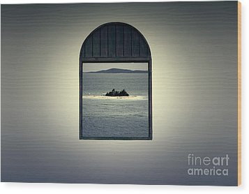 Window View Of Desert Island Puerto Rico Prints Lomography Wood Print by Shawn O'Brien