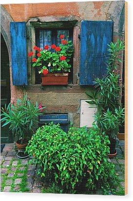 Windows And Doors 2 Wood Print by Maria Huntley