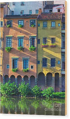 Windows On The River Arno Wood Print