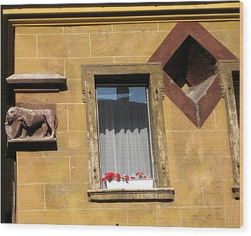 Windows To Budapest Wood Print