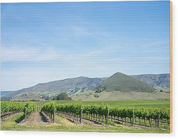 Wine Country Edna Valley Wood Print