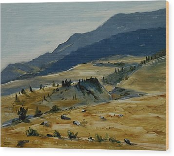 Wine Glass Valley Montana Wood Print