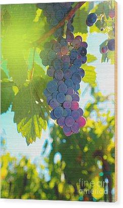 Wine Grapes  Wood Print
