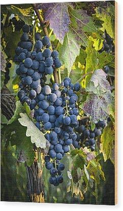 Wine Grapes Wood Print by Tetyana Kokhanets