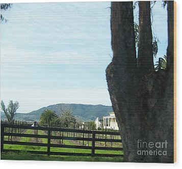 Wood Print featuring the photograph Winery by Bobbee Rickard