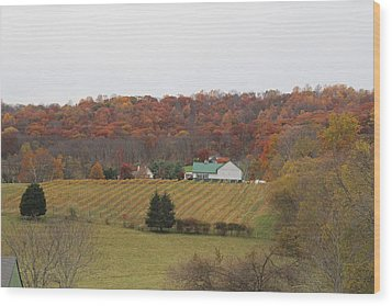 Winery In Virginia At Fall Wood Print by Renee Braun