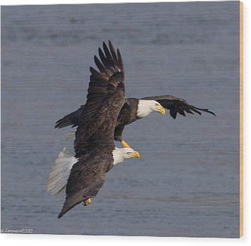 Wing Space  Wood Print by Glenn Lawrence