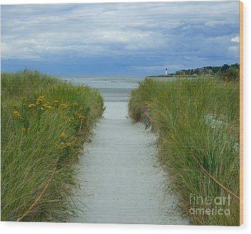 Wingaersheek Beach Path And Annisquam Lighthouse Wood Print by Kristen Fox