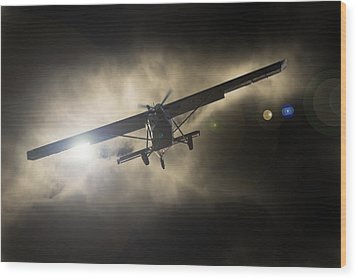 Wood Print featuring the photograph Wings by Paul Job