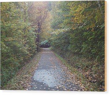 Winnipesaukee Trail Wood Print by Catherine Gagne