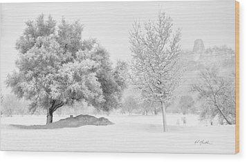 Winona Snowstorm Wood Print by Al  Mueller