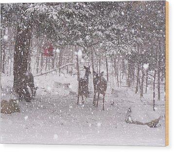 Winter 2014 Wood Print